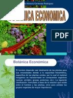 Botánica Económica1
