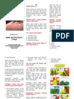 96259195 Leaflet Malaria