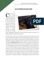 Alicia Gómez_Revueltas en Brasil y otras crisis