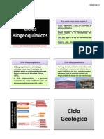 Aula 4 - ciclos biogeoquímicos
