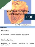 6. Anatomia Do Sistema Cardiovascular