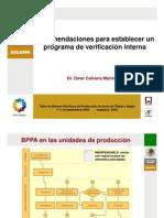 10 Verificacion interna.pdf