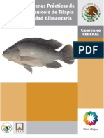 Manual_Tilapia.pdf