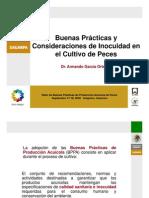 03 BPPA e inocuidad peces 2009.pdf