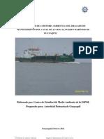 Auditoria Ambiental Informe XVII 02 2011