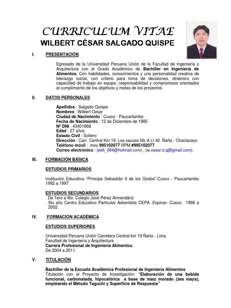 Moderno Curriculum Vitae Para Director De Ingeniería Patrón ...