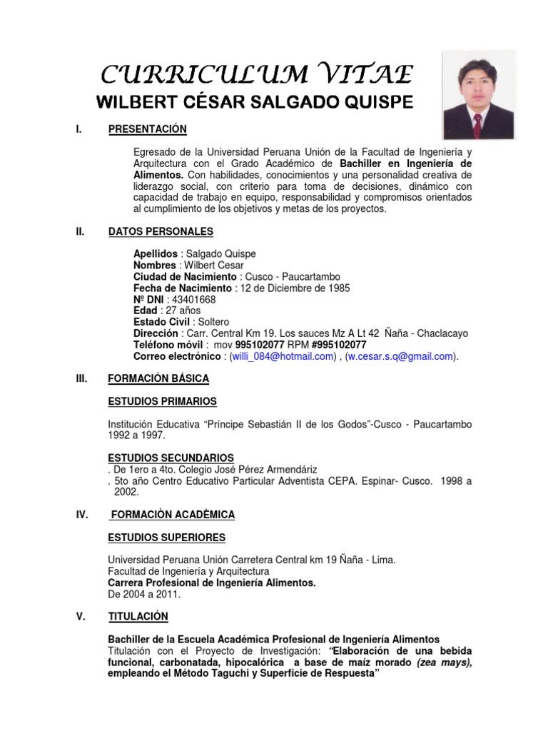 Curriculum Vita Wilbert Cesar Salgado Quispe Copy