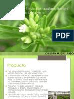 Presentación Proyecto Stevia.pdf