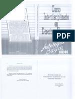Curso Interdisciplinario en Derechos Humanos, Antología Bási