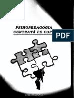 Manual p Pcc