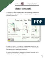 fisiologiarespiratoriasonia2-120330162347-phpapp01