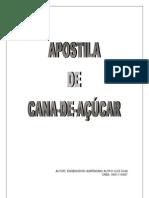 APOSTILA CANA DE AÇUCAR