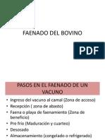 Faenado Del Bovino