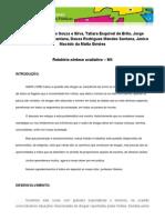 Relatório síntese avaliativo JTC 2013