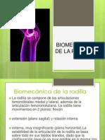 Bio Mecanic Adela Rod Ill A