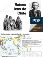 raceshistricasdechile-090426232427-phpapp01