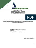PROTOCOLO DE LA INVESTIGACIÓN CUALITATIVA 2