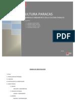 Cultura Paracas(1)