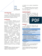 Obstruccin Intestinal Formato Manual