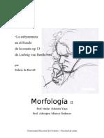 Trabajo práctico II - Morfo II