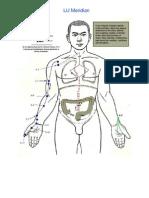 Meridians of Acupuncture-1 (1)