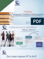 Pam - Training Pedagogico Abilitativo Metacognitivo