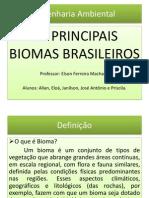 Os Principais Biomas Brasileiros