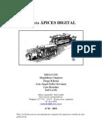 13 Ápices Digital.doc