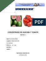 Concentrado de Guayaba y Tomate ---- Informe ----