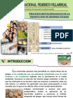 Grupo 02 - Procesos Biotecnologicos en La Produccion de Bioinsecticidas