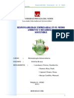 Monografia Responsabilidad Empresarial en El Medio Ambiente
