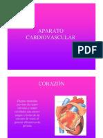 c4 Aparato Cardiovascular
