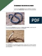 Las Serpientes Venenosas y Sus Efectos en El Cuerpo