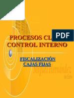 Procesos Clave Caja Fija1
