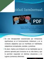 Discapacidad Intelectual Power (3)