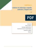 Principios básicos de endoscopia, ecografía, contrastes y doppler-color