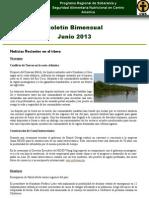 Boletin bimensual pressan junio 2013 español