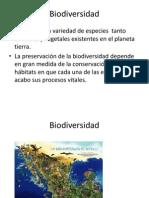 Biodiversidad Para URL Ecologia