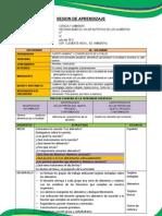 1. s.a.s. Ndeg 01ciencia y Ambiente Para PDF
