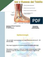 Musculos y Huesos Del Tobillo. Presentacion