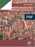 Autonomia Indig en Tierras Altas