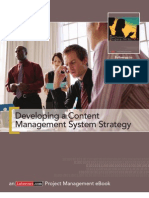 Developing a Content Management System Strategy