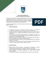 profi_2013_reglas.pdf