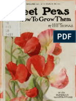 Hh Thomas Sweet Peas