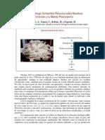 Cultivo pleurotus sobre residuos vitivinícolas
