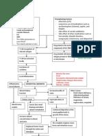 Patho of Post renal acute renal failure
