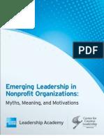 Amex Report Emerging Leadership