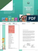 Organizacion Escolar Efectiva_1