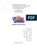 Anatomia Humana Sistema Circulatorio