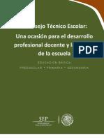 Curso Taller Consejo Tecnico Escolar 2013 2014[1]